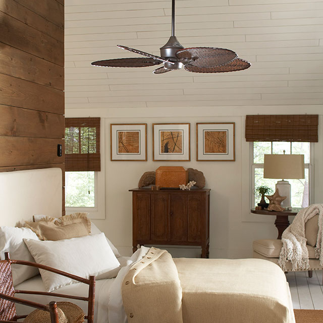 Jamul Ceiling Fans and Lights